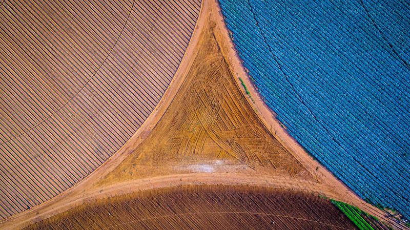 مزارع آفریقای جنوبی بعد از زمستانی بسیار سرد | عکس از Eddie Oosthuizen