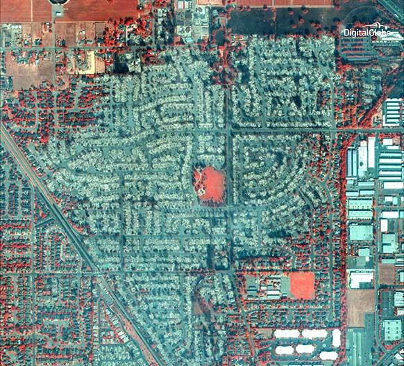 پارک Coffey در سانتا روسا، مادون قرمز. سانتا روسا، کالیفرنیا