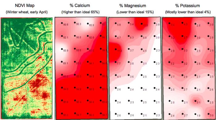 سامانه سنجش از دوری Apis به یک کشاورز در مقایسه سلامت گیاهان از طریق داده های نمونه خاک کمک کرده است.