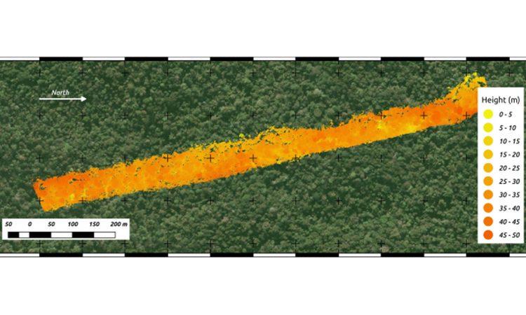 لیدار هوایی در جنگل های بارانی